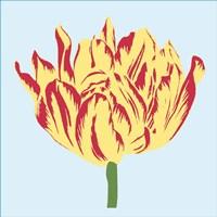 Soho Tulip II Fine Art Print
