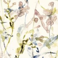Flower Drips II Framed Print