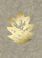 Gold Foil Leaf I on Lichen Wash Framed Print