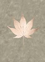Rose Gold Foil Leaf IV on Lichen Wash Framed Print