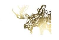 Gold Foil Moose Fine Art Print