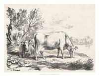 Rural Charms III Fine Art Print