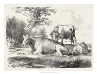 Rural Charms IV Fine Art Print
