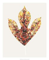 Fall Mosaic Leaf II Fine Art Print