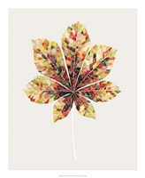 Fall Mosaic Leaf IV Fine Art Print