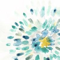 Starburst Floral II Framed Print