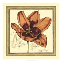 Tulip Study I Fine Art Print