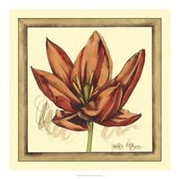 Tulip Study II Framed Print