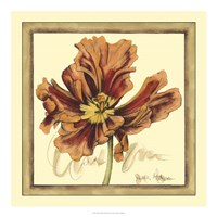 Tulip Study III Framed Print