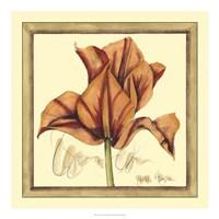 Tulip Study IV Framed Print