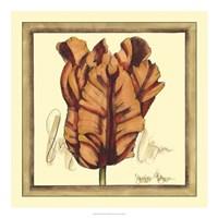Tulip Study VIII Framed Print