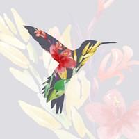 Grey Floral Hummingbird Fine Art Print