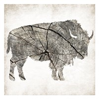 Buffalo Rings Mineral Fine Art Print