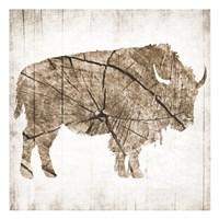 Buffalo Rings Fine Art Print