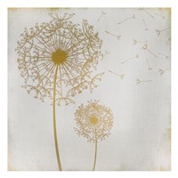 Make a Wish 1 Fine Art Print