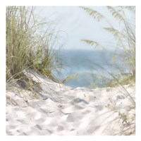 Over The Coastal Dune Fine Art Print