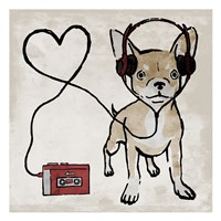 Cool Chihuahua Framed Print