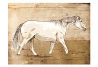 Walking Horse Fine Art Print