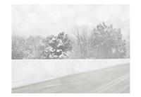 Winter White B Fine Art Print