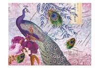 Peacock 112 Plum Framed Print