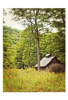 Country Barn 2 Vertical Vintage Fine Art Print