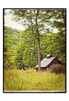 Country Barn 2 Vintage Border Fine Art Print