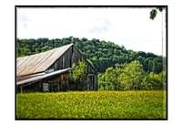 Country Barn 4 Fine Art Print