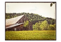Country Barn 4 Vintage Fine Art Print