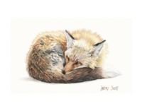 Snuggled Up Fine Art Print