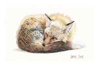 Snuggled Up Fine Art Print
