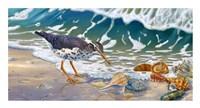 Beach Bums Fine Art Print