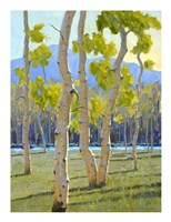 North Country Spring Fine Art Print