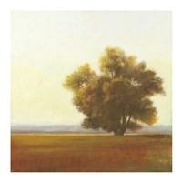 Lone Tree Fine Art Print