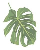 Philodendron 2 Fine Art Print
