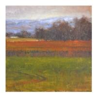 Red Vineyard Near The River I Fine Art Print