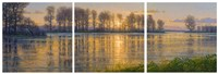 Reflections Triptych Fine Art Print