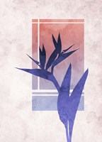 Ombre Bird of Paradise Flower Fine Art Print