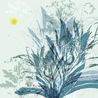 Martin Calme Fine Art Print