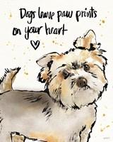 Strike a Paws VII Fine Art Print