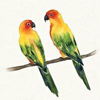 Tropical Fun Bird III Fine Art Print