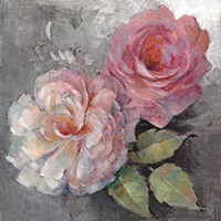 Roses on Gray I Framed Print
