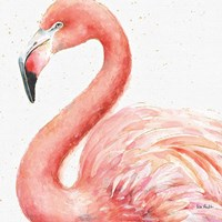 Gracefully Pink III Fine Art Print