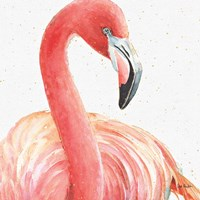 Gracefully Pink II Fine Art Print