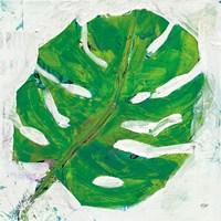 Single Leaf Play on White Fine Art Print
