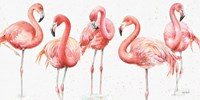 Gracefully Pink VIII Fine Art Print
