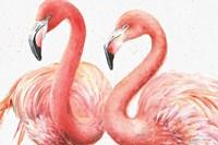 Gracefully Pink I Fine Art Print