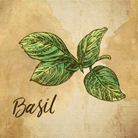 Basil on Burlap Fine Art Print