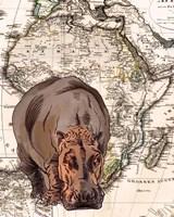 African Hippo Fine Art Print