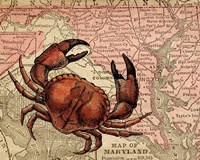 Maryland's Jumbo Crabs Fine Art Print