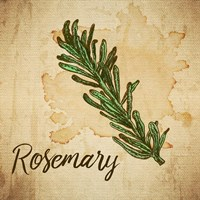 Rosemary on Burlap Fine Art Print